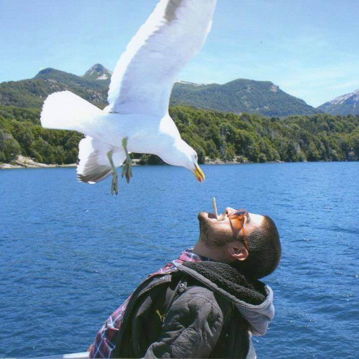 Andres and the seagull
