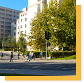 Summer Junior Program UCLA Campus Icon